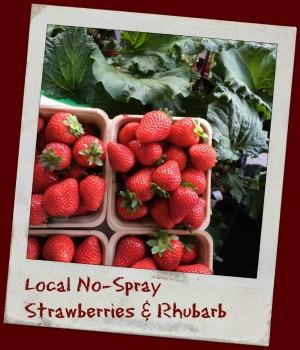 local no spray strawberries and rhubarb farm abbotsford